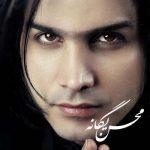 محسن یگانه گرگ و میش