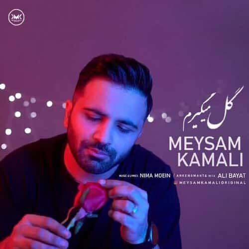 Meysam Copy 500x500 - دانلود آهنگ گل میگیرم از میثم کمالی