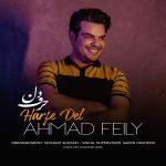 احمد فیلی حرف دل