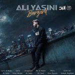علی یاسینی برگرد