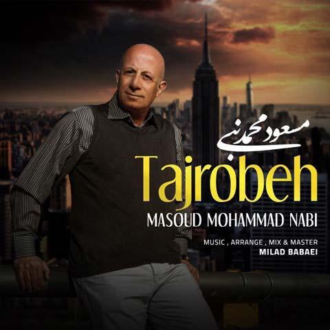 مسعود محمد نبی تجربه
