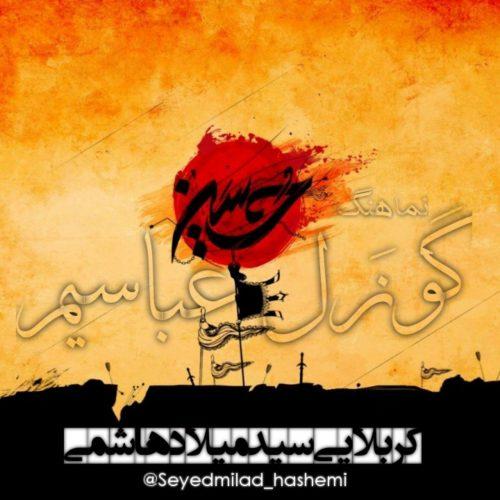 میلاد هاشمی گوزل عباسیم