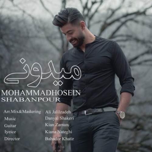 محمدحسین شعبانپور میدونی