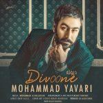 محمد یاوری دیوونه
