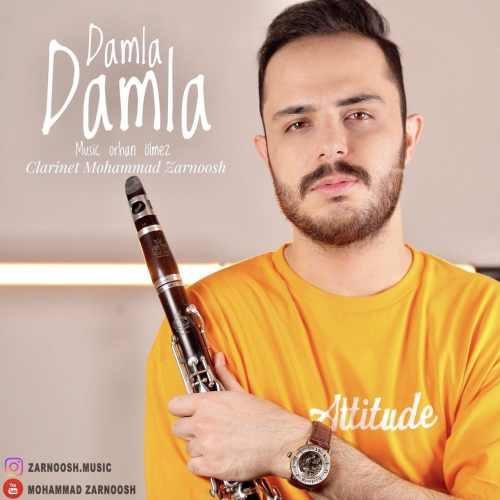 محمد زرنوش داملا داملا