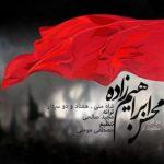 محسن ابراهیم زاده شاه منی