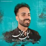 محسن قادری لیلی و مجنون
