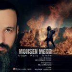 محسن مهر مگه حالیت میشه