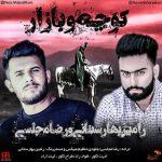 رامین بهارستانی و رضا مجلسی کوچه و بازار