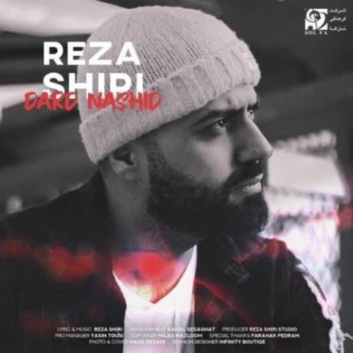 reza shiri dard nashid 1 500x500 - دانلود آهنگ رضا شیری درد نشید