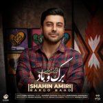 shahin amiri bargo baad 2021 01 12 18 24 04 150x150 - دانلود آهنگ برگ و باد از شاهین امیری