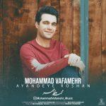 محمد وفامهر آینده روشن