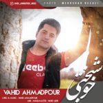 وحید احمدپور خوشبختی
